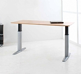 Heavy Duty Sit Stand Desk 175kg Capicity