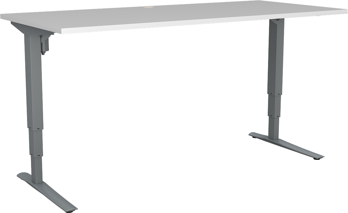 AFRDI Approved Electric Sit Stand Desk