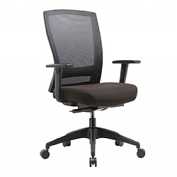 Marvelous Office Chairs Nepean Office Furniture Penrith Sydney Home Interior And Landscaping Ymoonbapapsignezvosmurscom